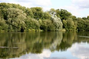 Warning to open water swimmers – stay away from ponds and lakes at Northamptonshire's country parks