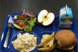 Image representing associated link for 'Free school meals'