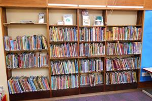 Update on review of Northamptonshire library service