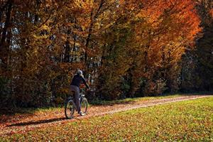 cyclist riding on path past trees in autumn