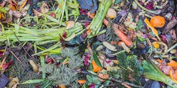 Image representing associated link for 'Composting'