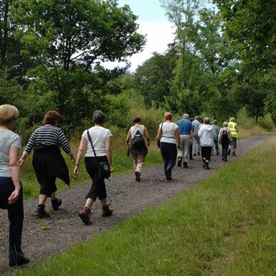 Walking clubs and activities